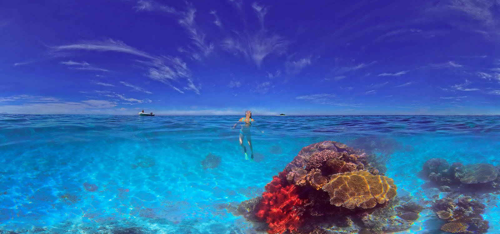 Rocket Guide to Diving in New Caledonia