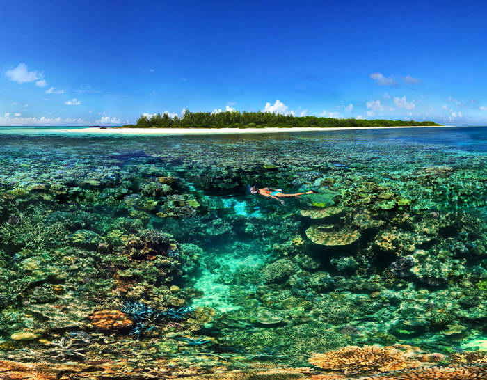 Guide to Diving in the New Caledonia Lagoon